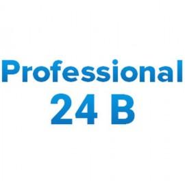 Инверторы МикроАрт МАП Professional 24В