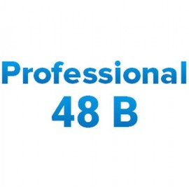 Инверторы МикроАрт МАП Professional 48В